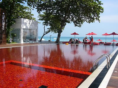 New Car 2012: The Library Hotel of Thailand and Red Pool