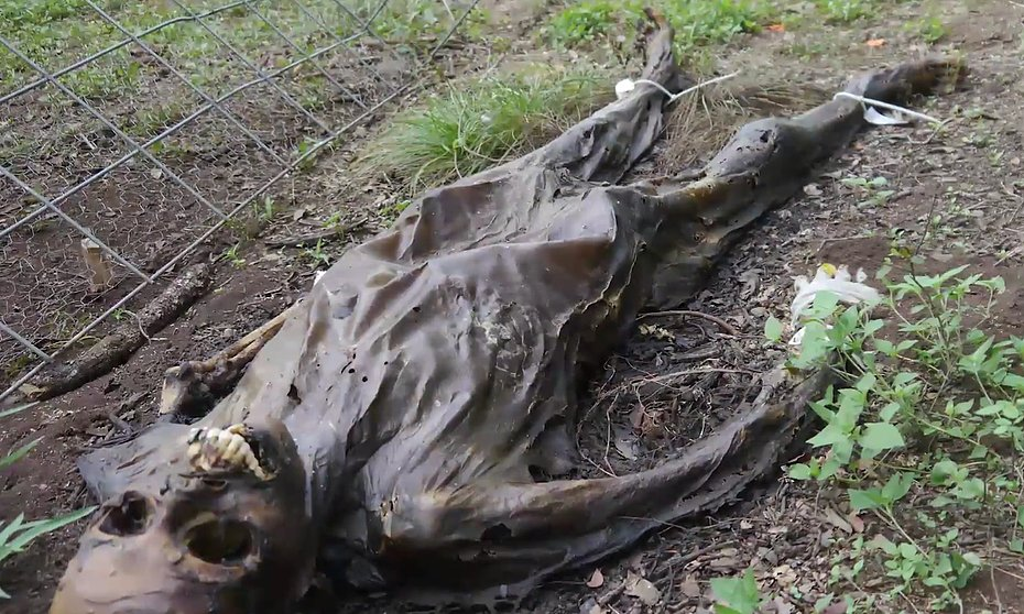 Texas Freeman Ranch Body Farm Plant Real Human Corpses For Science | BuzzNick
