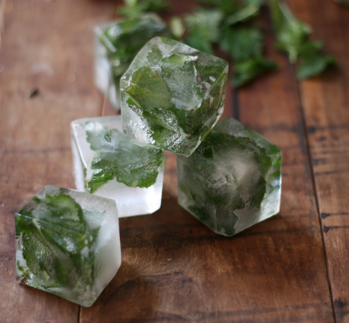 17 Apart: How To: Mint Infused Ice Cubes