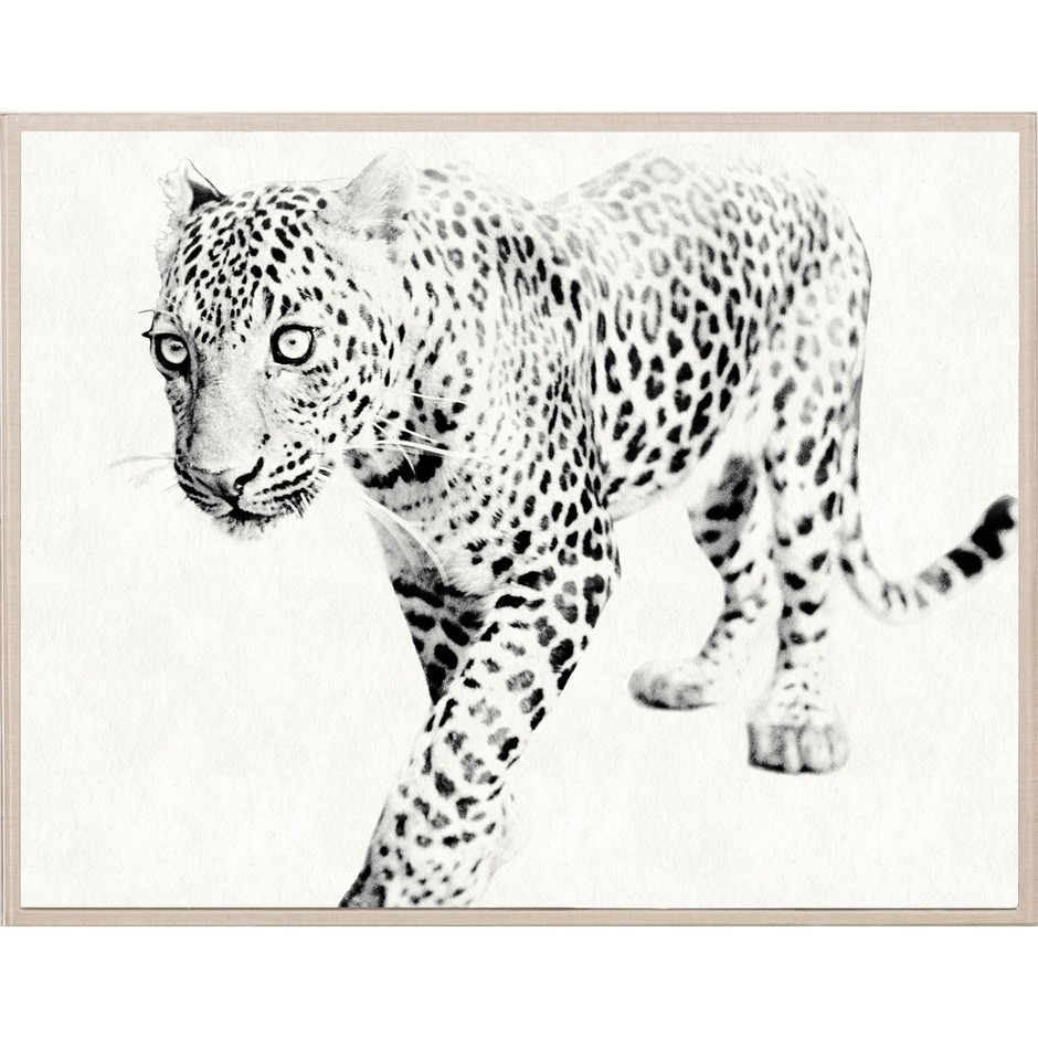 Natural Curiosities Tylinek Leopard | Animal Wall Art | Art | Decor | Candelabra, Inc.