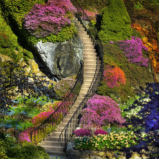 Fancy - Butchart Gardens @ British Columbia