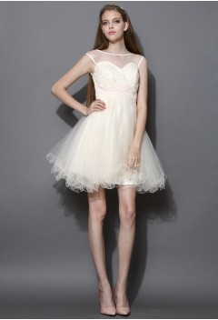 Sweet Heart Embroidered Tulle Dress in Champagne - New Arrivals - Retro, Indie and Unique Fashion