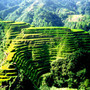 The Rice Terrace Fields of Banaue | Photography Tips