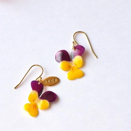 viola purple×yellow - ovce
