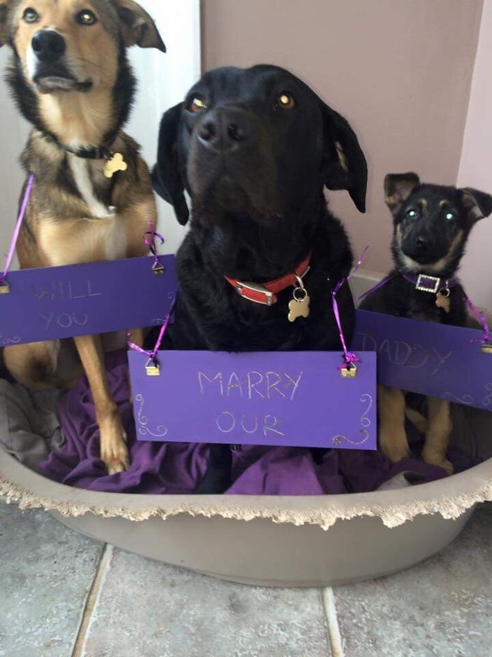 Jake Chief — awwww-cute: My managers boyfriend proposed to...