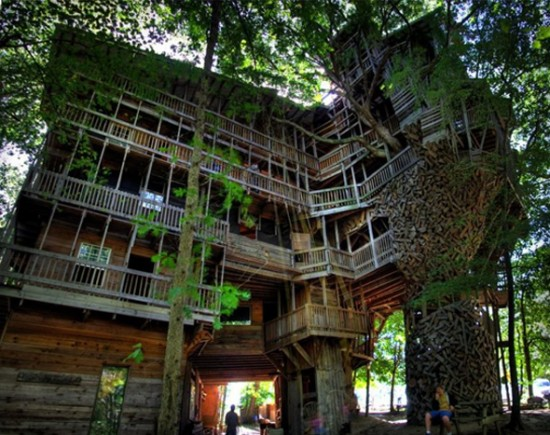 Big Tree House | Fubiz™