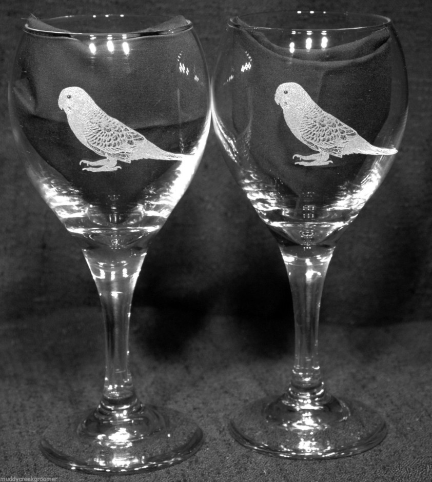 New Unique & Beautiful Budgie Parakeet Bird Etched on Wine Glasses Glaware | eBay