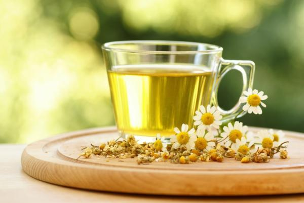 Camomile Tea Benefits | Tea Blog, Tea Tips | Erin's Tea