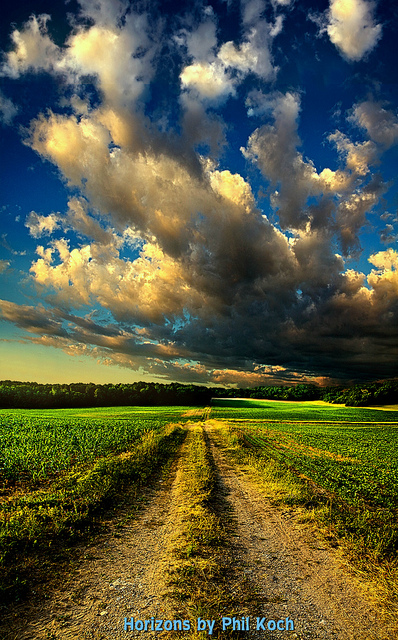 Dirt Road | Flickr - Photo Sharing!