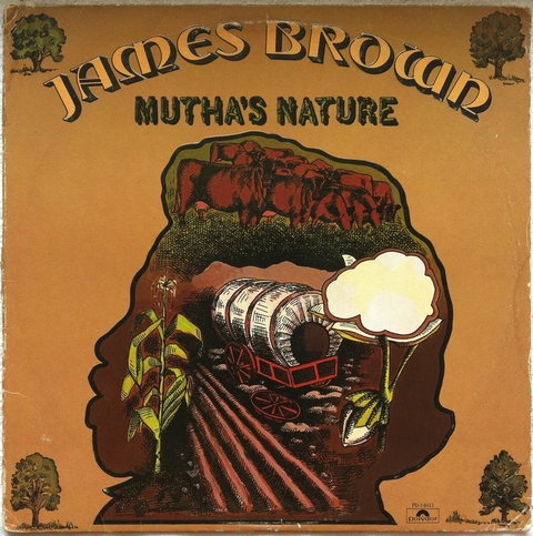 James Brown and The New J.B.'s/Mutha's Nature : まわるよレコード ACE WAX COLLECTORS