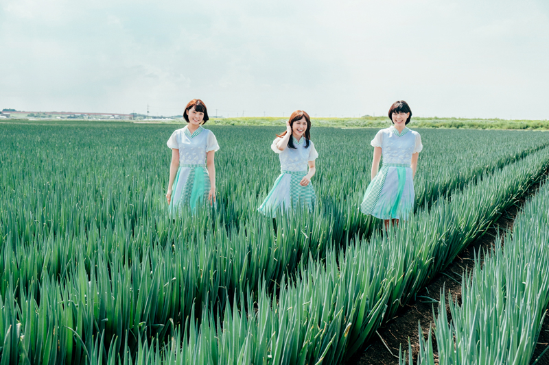 NEWS|Negicco Official Home Page