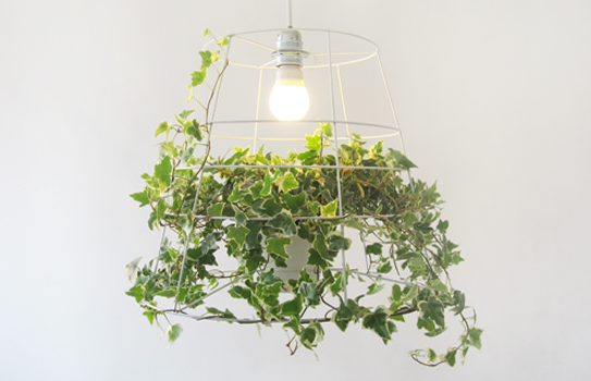 Meirav Barzilay - Designer - Projects, photosynthesis lamp