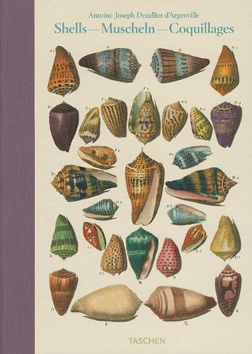 Amazon.co.jp: Shells - Muscheln - Coquillages: Conchology or the Natural History of Sea, Freshwater, Terrestrial and Fossil Shells 1780: Antione-Joseph Dezallier d'Argenville: 洋書
