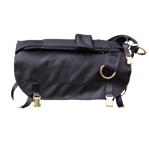 LORINZA Messenger Bag GOLD S size