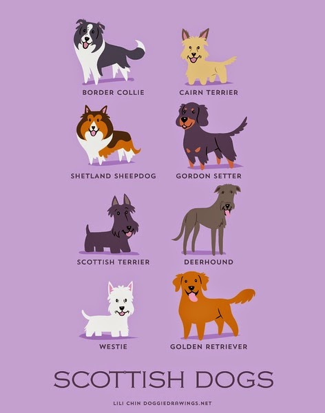 Varietats: Dogs Of The World by Lili Chin