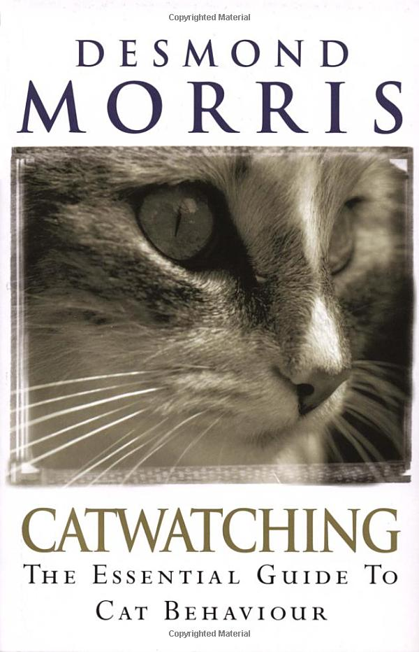 Catwatching: The Essential Guide to Cat Behaviour: Amazon.co.uk: Desmond Morris: Books
