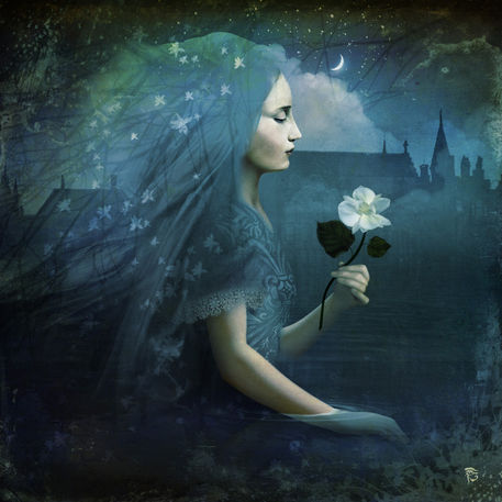 """""""The Midnight Flower"""" Digital Art art prints and posters by Christian Schloe - ARTFLAKES.COM"""