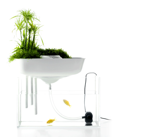 Google 画像検索結果: http://www.likecool.com/Gear/Projects/Floating%2520Garden/Floating-Garden.jpg