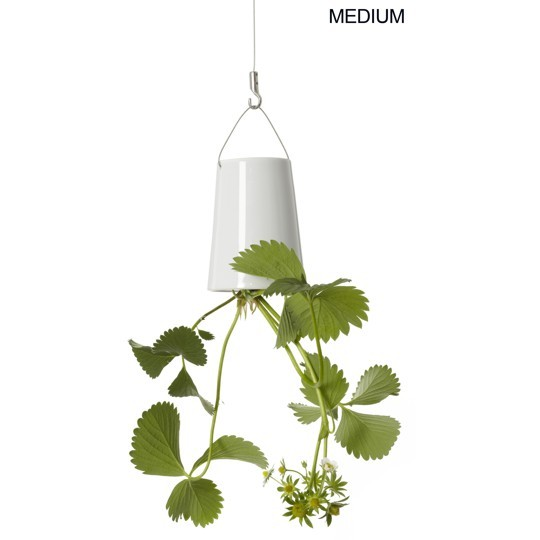 Suspension « SKY PLANTER » sur Bensimon