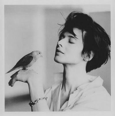 Isabella Rossellini   A Place For Beautiful Portraits.