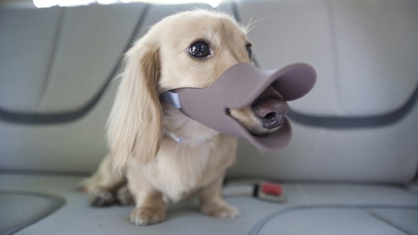 duck-bill dog muzzles by oppo
