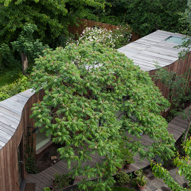 Tree House by 6a Architects | MOCO Vote