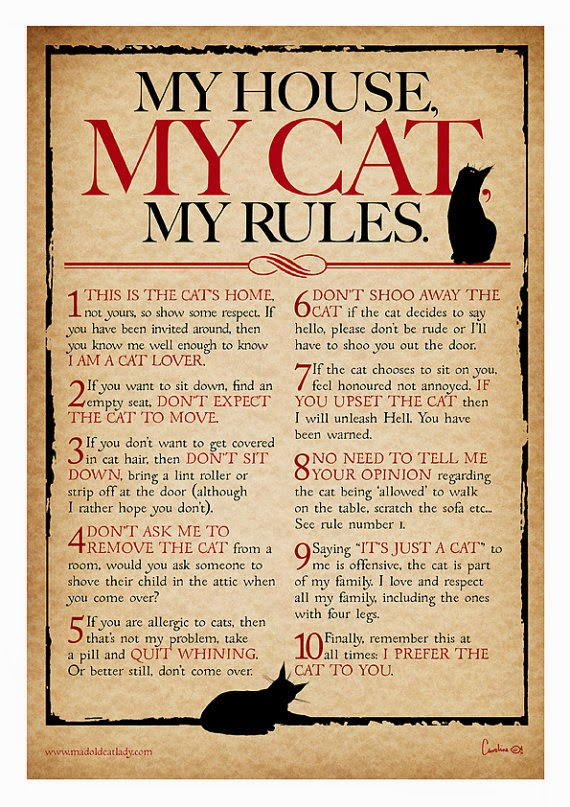 Varietats: My House, My Cat, My Rules by Mad Old Cat Lady