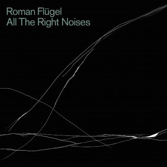 Roman Flügel - All The Right Noises (File, MP3, Album) at Discogs