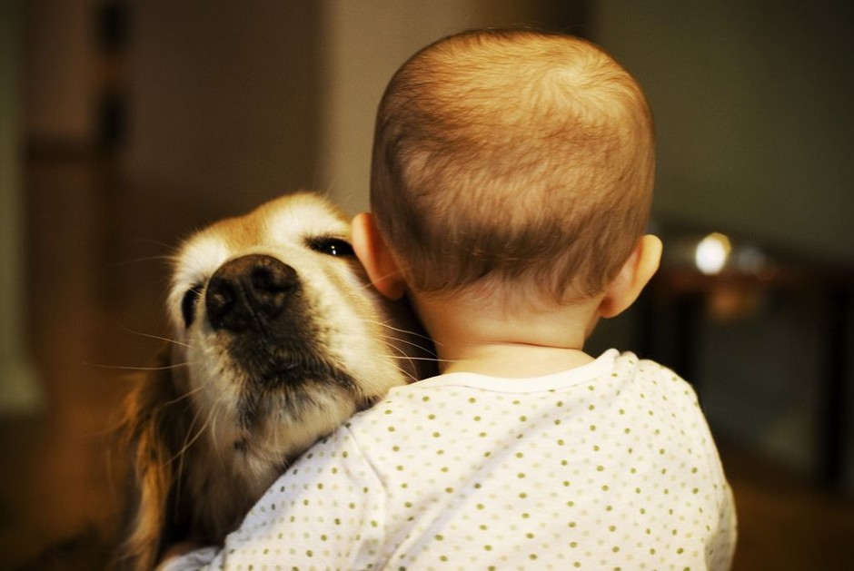 Feel The Love: 30 Kids Giving Hugs to Their Dogs | The Stuff Makes Me Happy