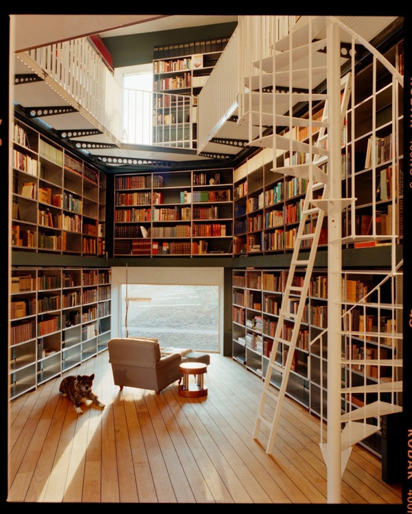 Bookworm Extraordinaire / Library