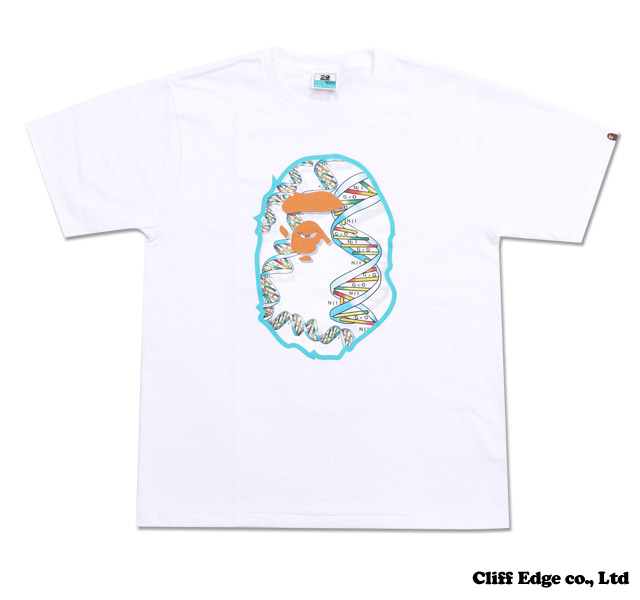 【楽天市場】A BATHING APE NW20 Exhibition TEE [Tシャツ] Designed by PHARRELL WILLIAMS [ファレル・ウィリアムス] WHITE 200-005360-030+【新品】【smtb-TD】【yokohama】:Cliff Edge