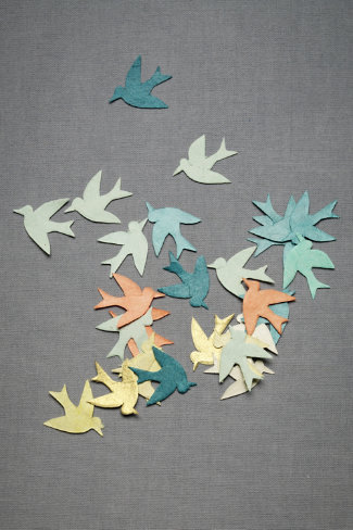 Fly Away Confetti in SHOP Décor Decorating at BHLDN
