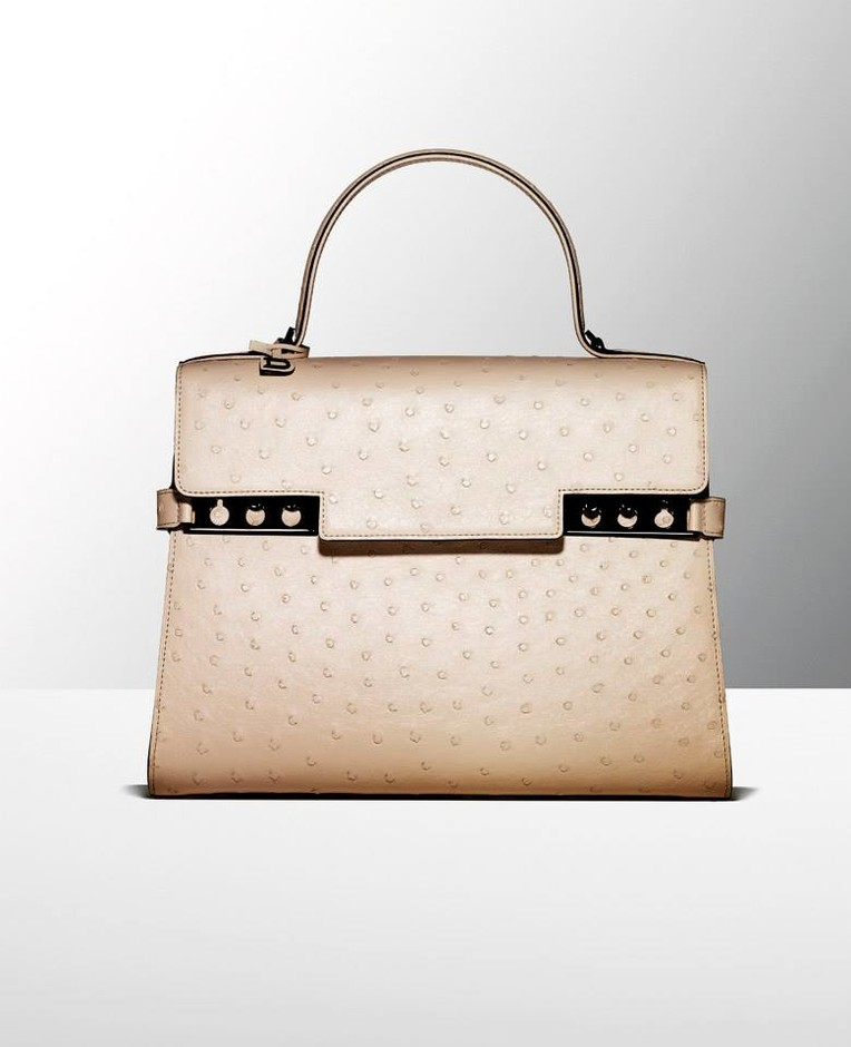 Carry a Classic: Special Collections Delvaux Lookbook at Barneys New York – NAWO