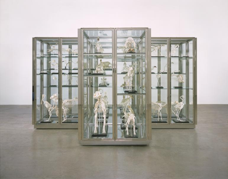 Where Are We Going? Where Do We Come From? Is There A Reason? - Damien Hirst