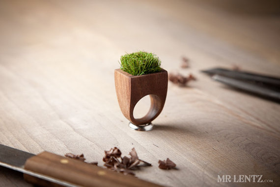 Unique Wooden Ring Grass Wooden Planter Ring Upcycled by MrLentz