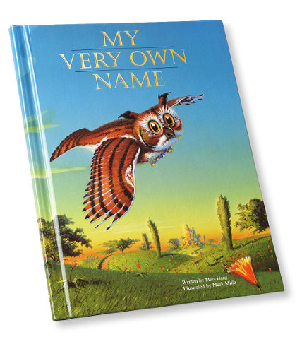 Boys' Personalized Storybook: Books   Free Shipping at L.L.Bean