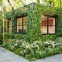 Ivy-Covered Green Cube by Scott Lewis | Inspired!