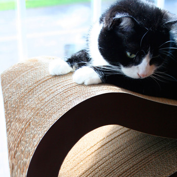 (24) Fab.com | Cat Scratcher Lounge