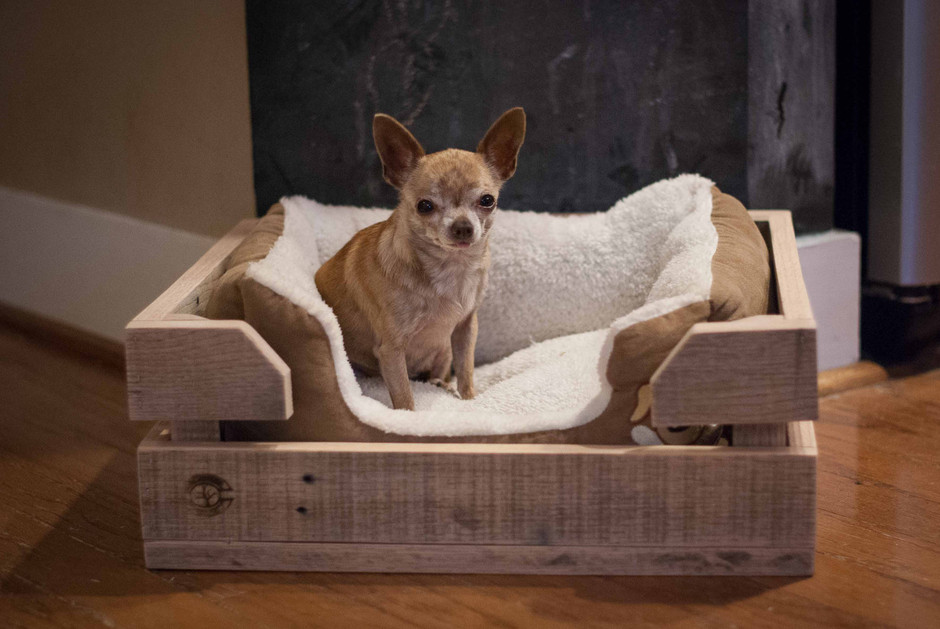 Cozy Custom Crate for Your Dog Bed by ReformedWood on Etsy