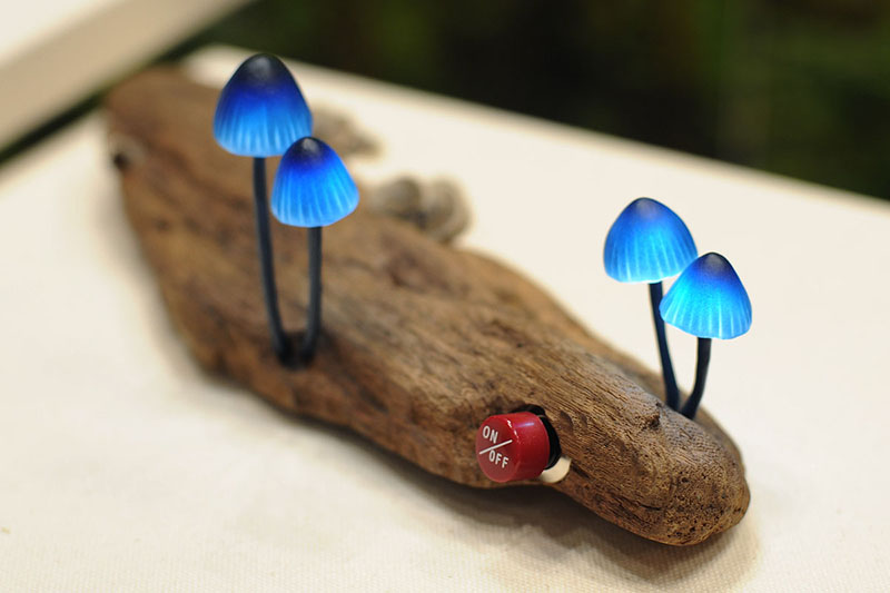 Mushroom LED | ChilliChilly