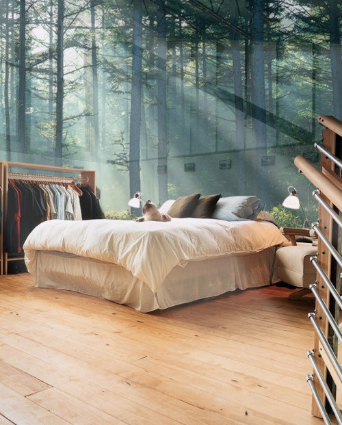 a Glass Wall Bedroom
