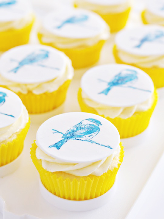 Sweetapolita – Vanilla Bean & White Chocolate Birdie Cupcakes {and Video Tutorial}