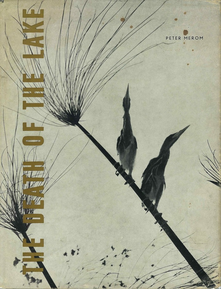 THE DEATH OF THE LAKE / PETER MEROM | LIEBBOOKS