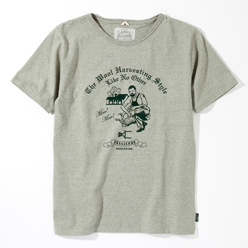 MOW MOW / VALLICANS designed by Jerry UKAI - TACOMA FUJI RECORDS ONLINE STORE