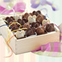 World's Finest Gourmet Handmade Chocolates- Burdick's Luxury Bonbon and Truffle Assortments -