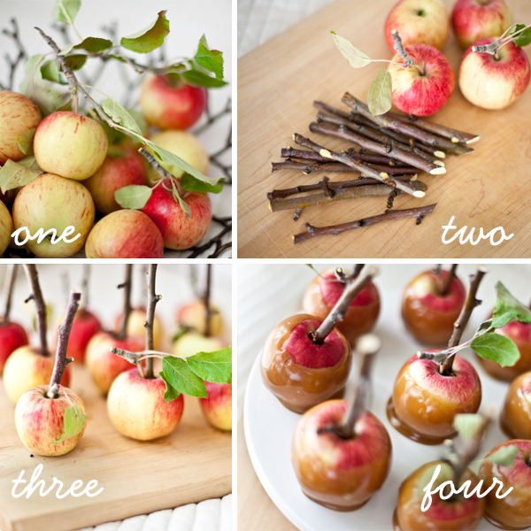 Gourmet Apples for your Wedding - Blog - Indianapolis Wedding Planners | Wedding Coordinators | Wedding Consultants | April Foster Events