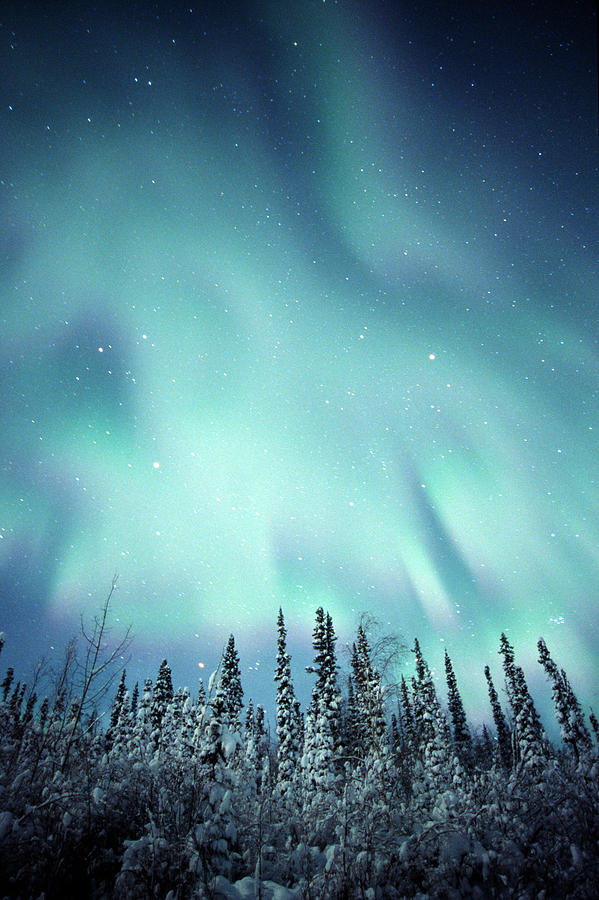 Northern Lights Over Snow Covered by Robert Postma - Northern Lights Over Snow Covered Photograph - Northern Lights Over Snow Covered Fine Art Prints and Posters for Sale
