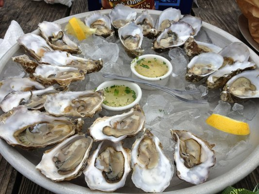 Pacific Sweetwater and Kumamoto Oysters with Hog Wash   Yelp