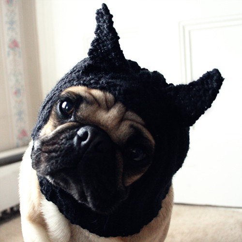 Dog Hat Black Cat Hat / Where the Wild Things by jessicalynneart