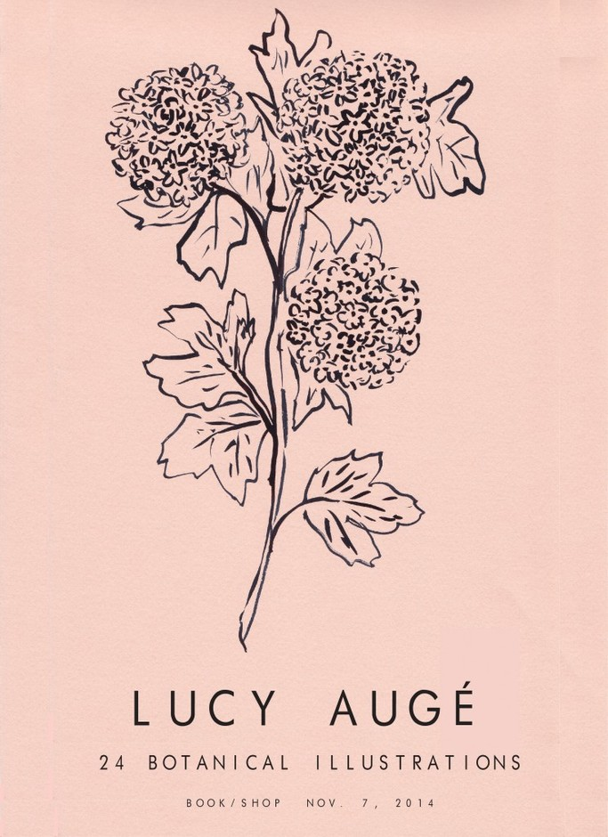 LUCY AUGE DRAWINGS : BOOK/SHOP